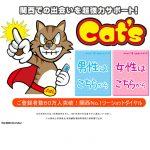 キャッツ(Cat's)